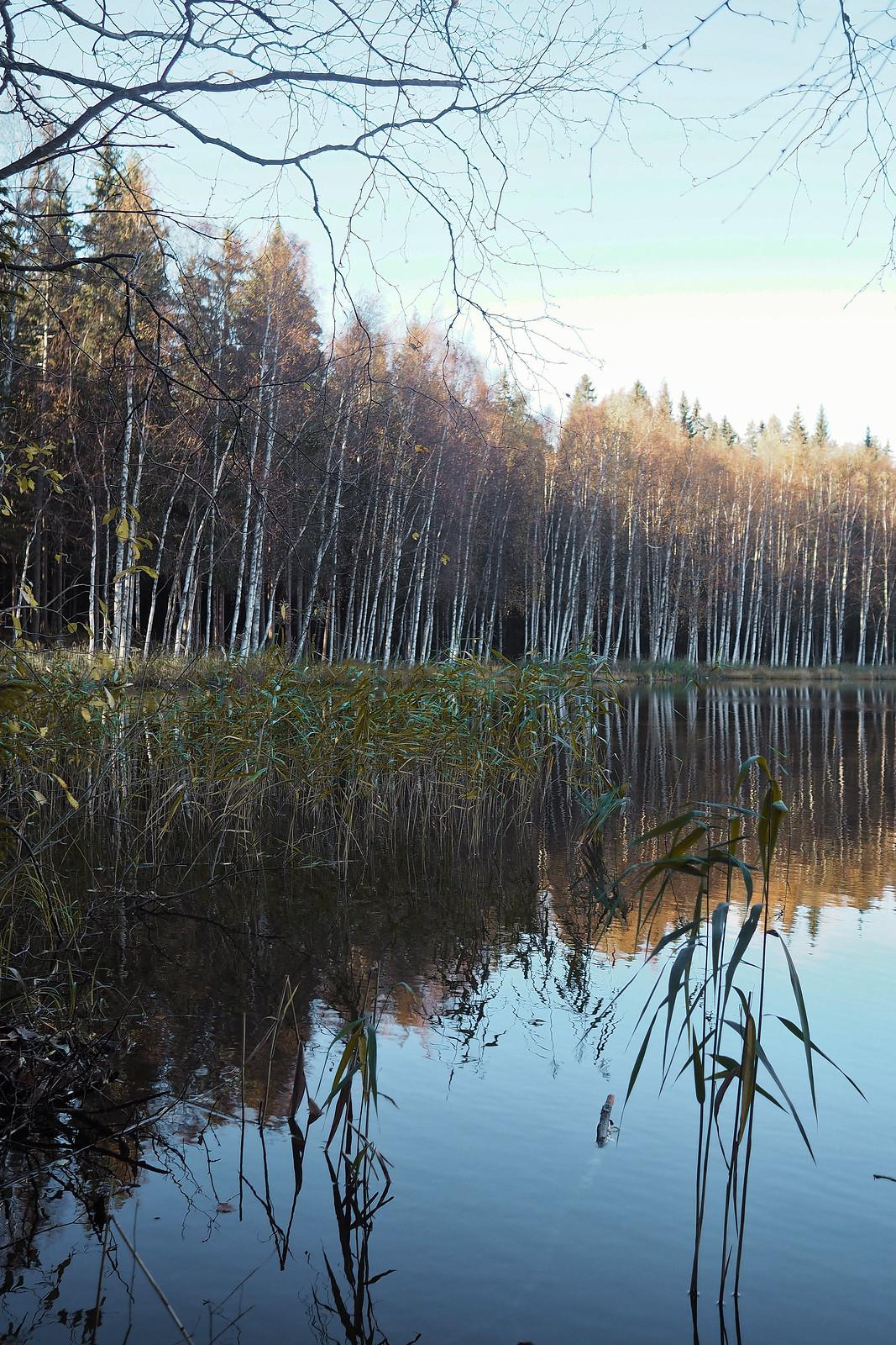 niihamajärvi