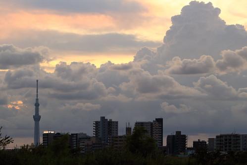 ichikawa chiba japan sunset cloud clouds skytree tokyo city