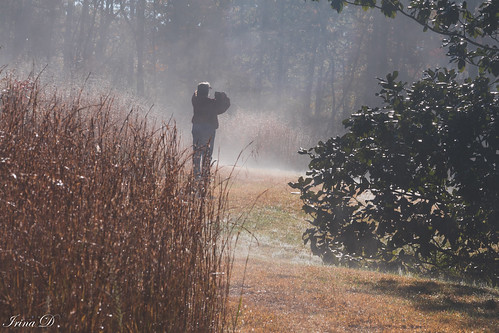 photographer person people fog landscape autumn fall mist grasses vegetation nature outside garden gibbsgardens canon moody beautiful old