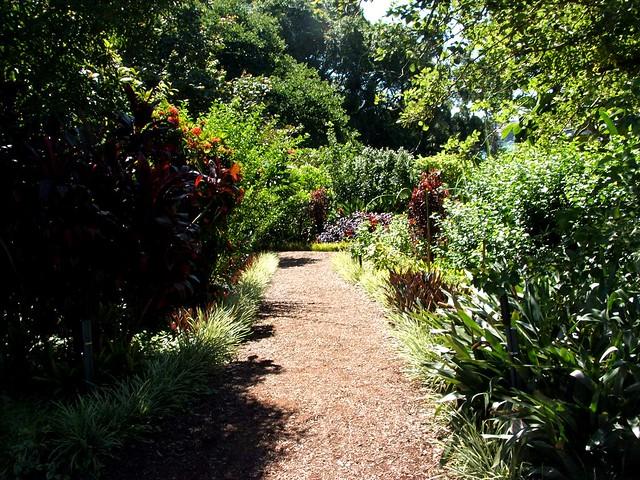 Botanical Gardens  - Sydney - 2014.