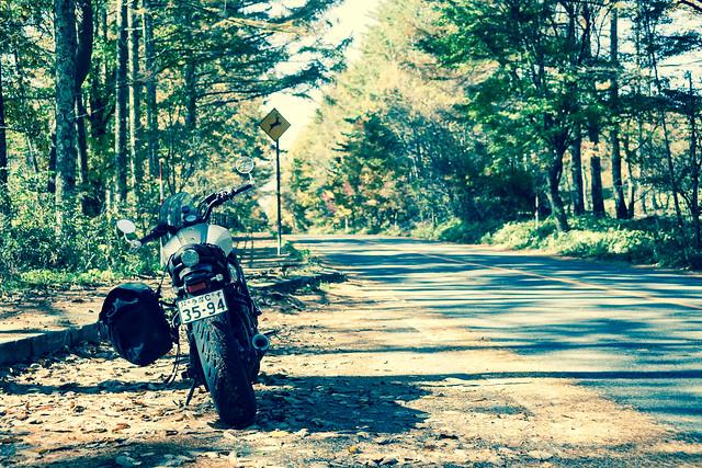 八ヶ岳高原ライン2