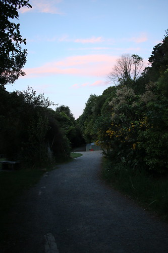 <p>We did a Twilight tour at Zealandia for our long weekend. Our host was lovely and we learned heaps.</p>