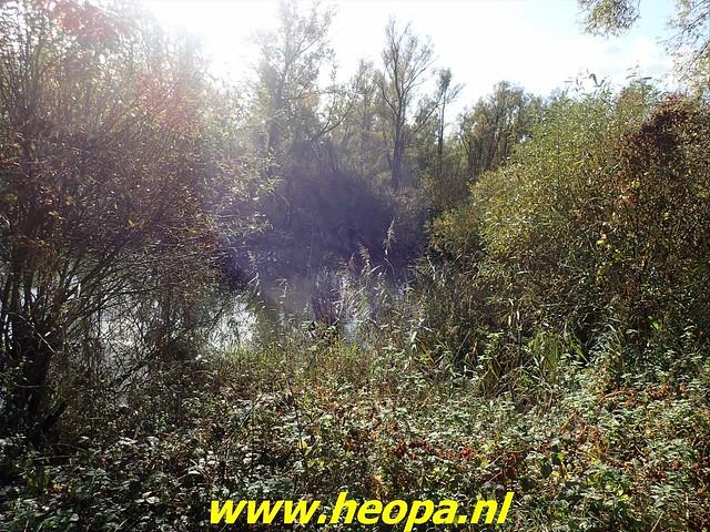 2020-11-04      Dordrecht 25 Km     (56)