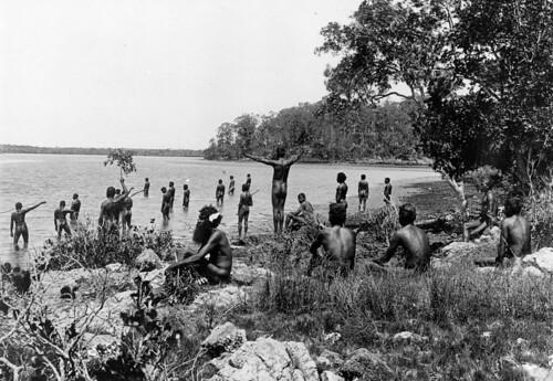 pimpama river spears cicatrices scars beard axe cooktown fishing naidoc2020 naidocweek naidoc alwayswasalwayswillbe aboriginal aborigines torres strait islanders traditional