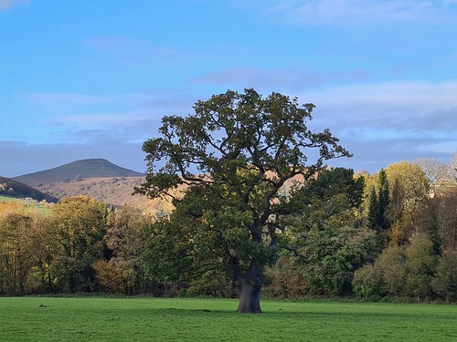 Sugarloaf from the banks of the River Usk (threejumps)