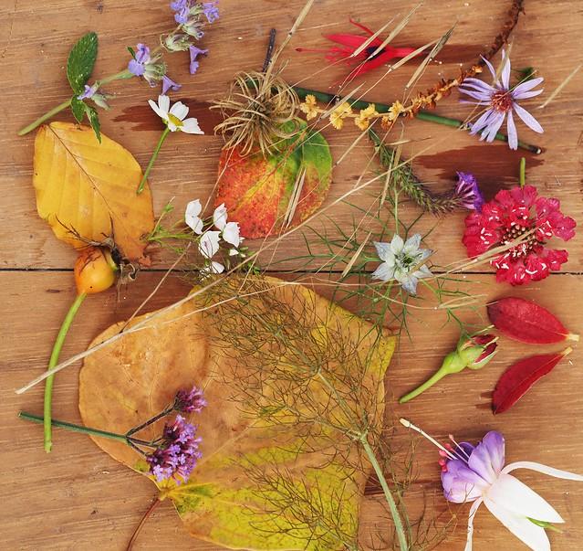 Autumn still life.