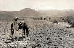 Vintage Postcard Mexico Volcano Popo