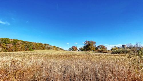 field iphone12pro landscape ultrawide outdoors