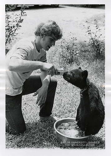 Baylor University-Bear Mascot-2-1970s