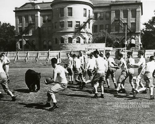 Baylor University-Bear Mascot-1930s