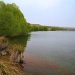 Lake Alexandrina lake front view