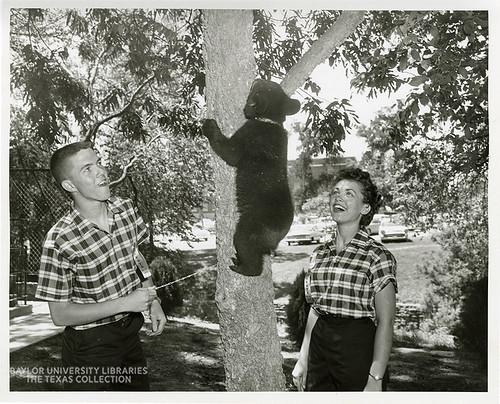 Baylor University-Bear Mascot-3-1950s