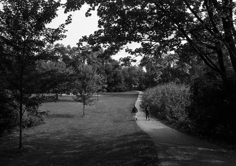 Pinewood Park Path to Morrison Heights