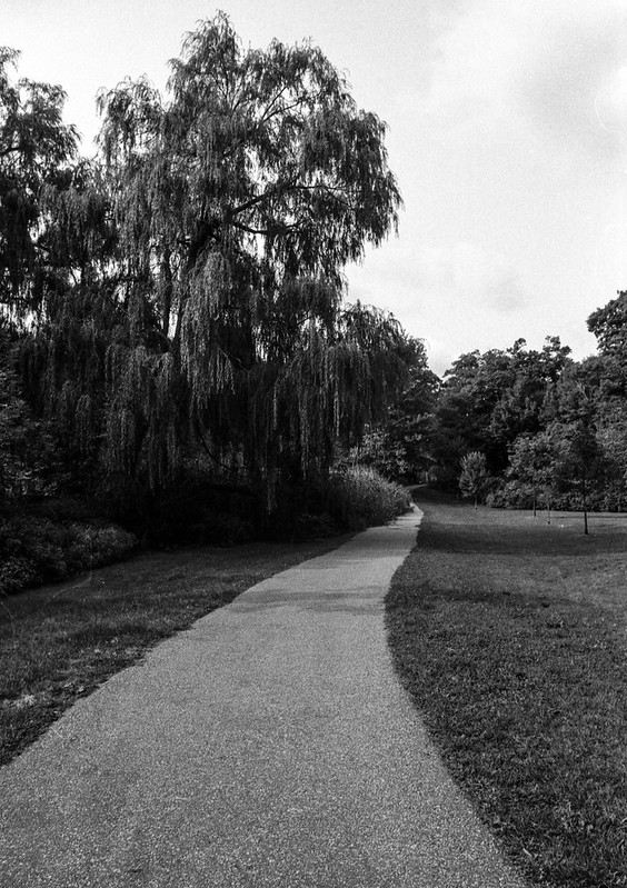 Pinewood Park Path to Take you to Chartwell
