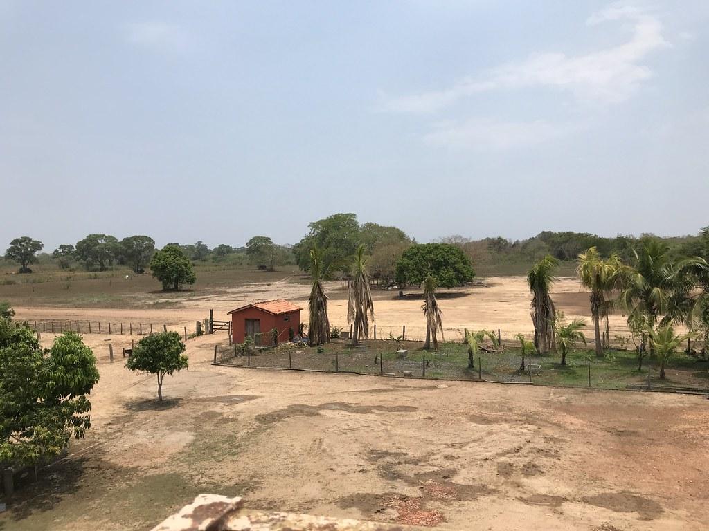 Transpantaneira- de Poconé a Porto Jofre, em ano de seca severa, outubro de 2020