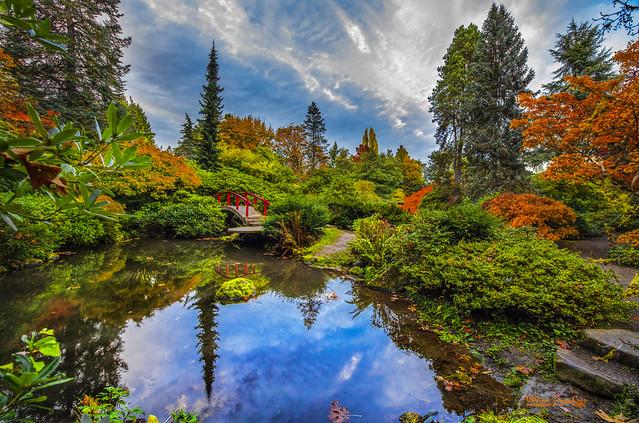 Autumn @ Kubota Garden  (EXPLORE)  📷 -11-1230-20- 📷