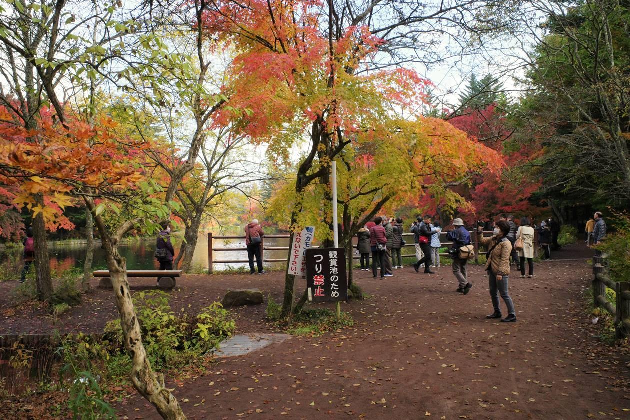 【軽井沢】雲場池の紅葉を見る観光客