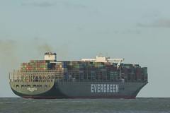 EVER GENTLE  Container Ship - Nieuwe Waterweg - Hoek van Holland