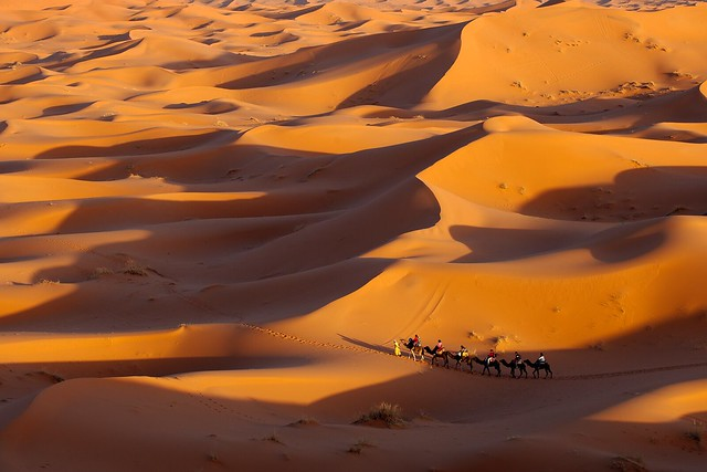Caravan in Desert, Erg Chebbi