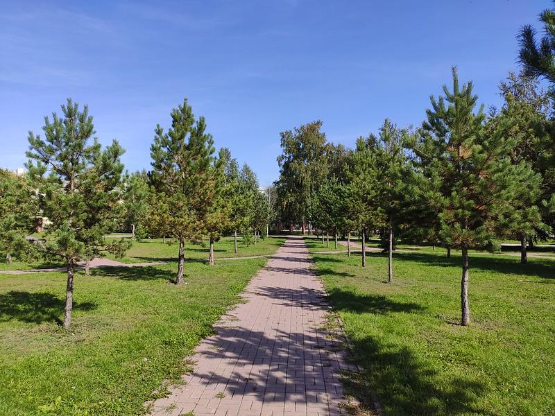 Белово - Дорожка среди деревьев в парке Молодежном
