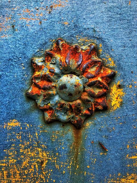 Flor de textura