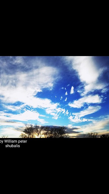 By William peter shubalis Google my name