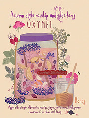 oxymel, illustrated recipe of a healing remedy