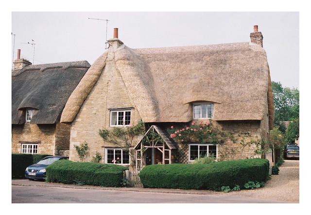 FILM- Thatch and roses