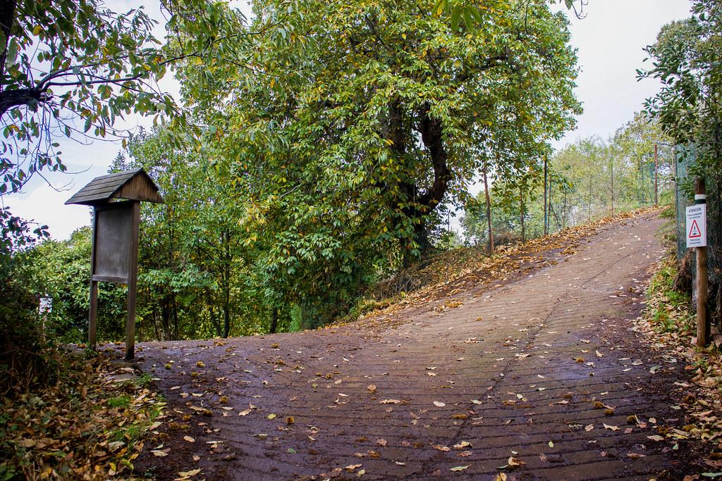 Cruce de senderos en Los Dornajos
