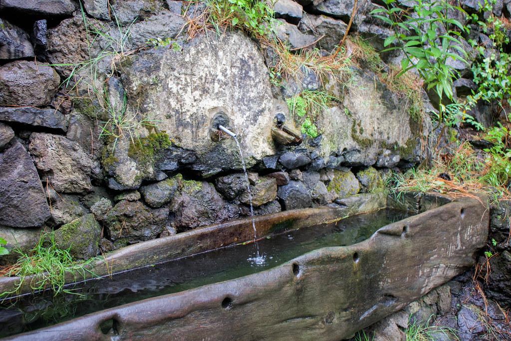 Fuente de Los Dornajos en Tenerife