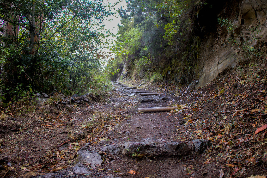 Inicio de la ruta de los castaños en Los Dornajos