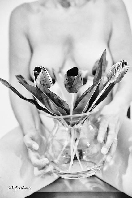 The Flowers of lockdown