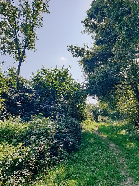 Douwevallei & Eeuwenhout