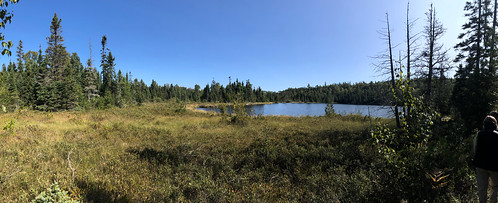 Sleeping Giant PP - a bog trail