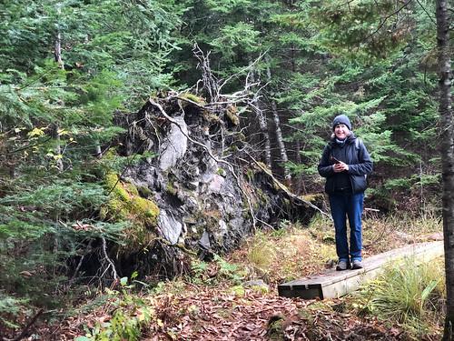 Algonquin PP - Achray -.Linda on a trail