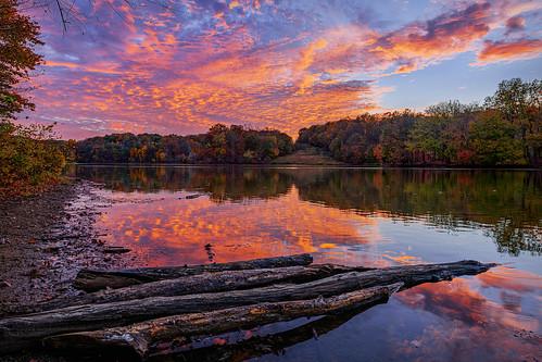 derwood maryland lakeneedwood lake sunset reflection pinksky driftwood landscape nature
