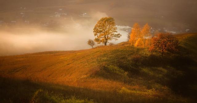 autumn views ...