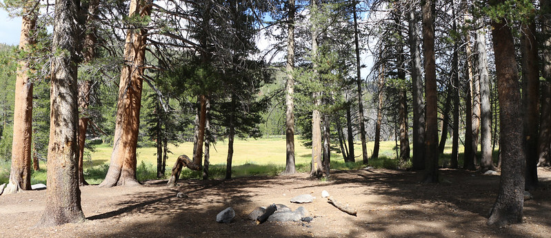 We never made it to the Official Rock Creek campsite as we saw a really nice one near a meadow and stopped there