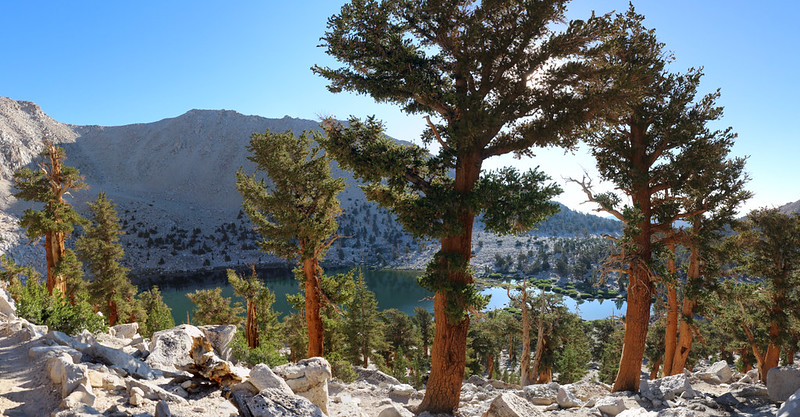 The Pacific Crest Trail climbs up and over a ridge north of Chicken Spring Lake