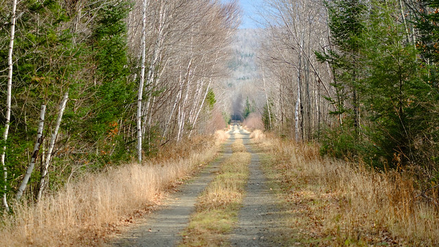 Presidential Rail Trail, New Hampshire
