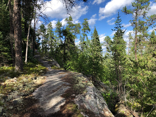 Halfway Lake PP - a trail with a rocky ledge