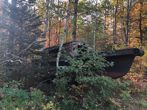 Driftwood PP - the boat in the woods