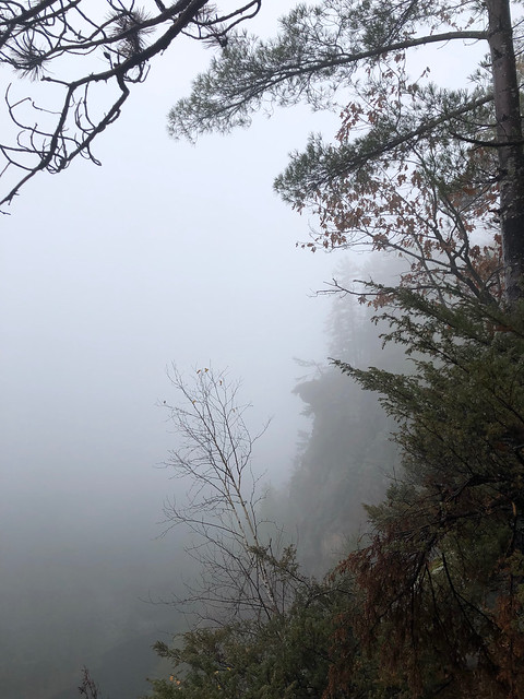 Algonquin PP - Achray - the Barron Canyon in the fog