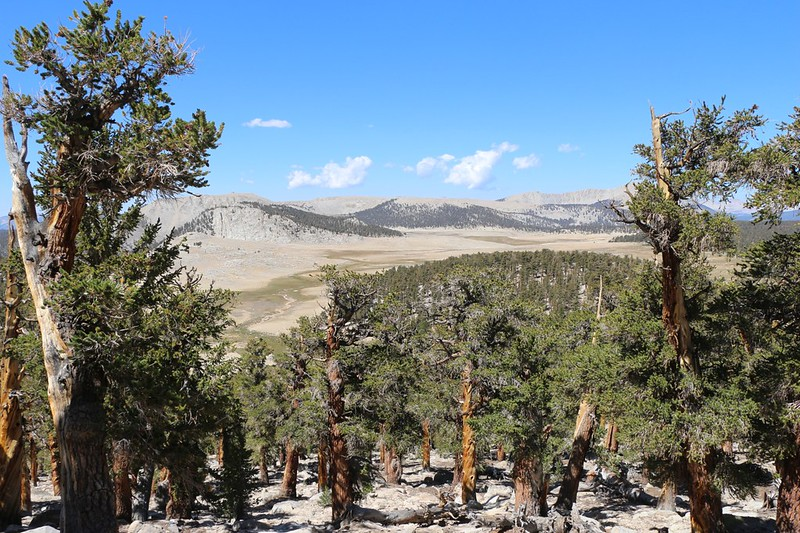 View of the Siberian Outpost from the Pacific Crest Trail north of Siberian Pass