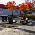 Årstahallen, Uppsala, October 17, 2020