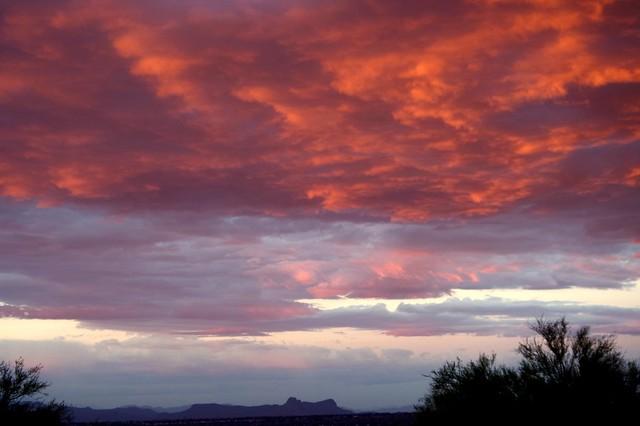 An Arizona Morning {Explored}