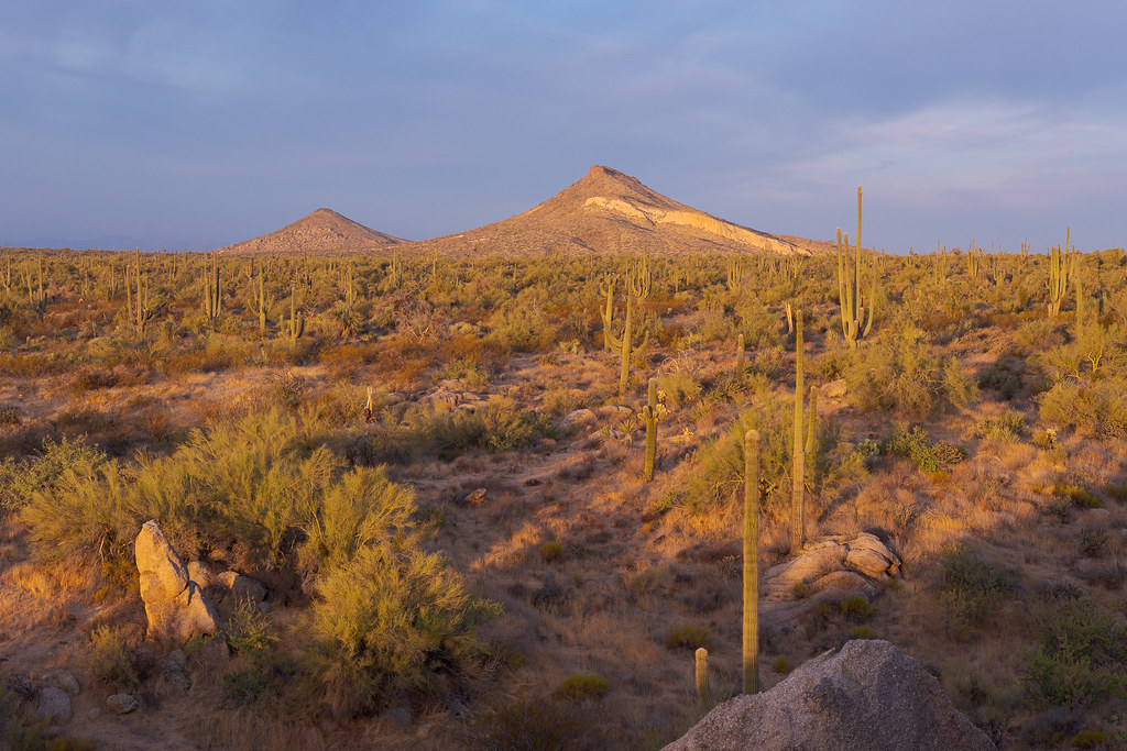 A sunrise view from Balanced Rock of Brown's Mountain and Cone Mountain, taken from the Balanced Rock Trail in McDowell Sonoran Preserve in Scottsdale, Arizona on October 24, 2020. Original: _CAM5688.arw