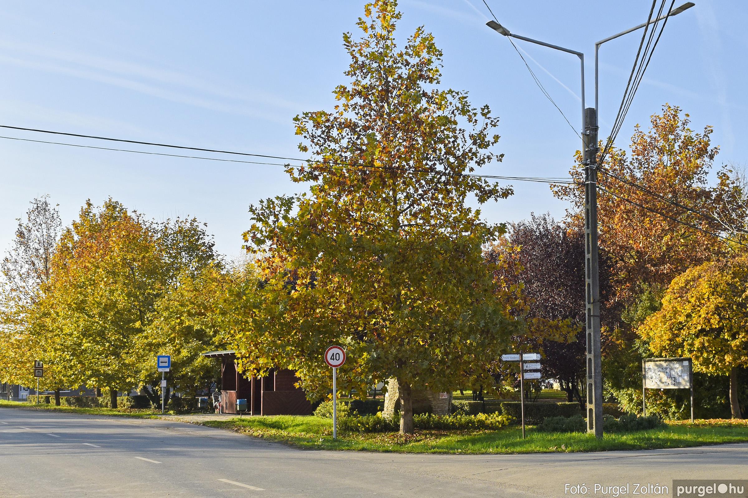 042 2020.11.08. Szegváron járt az ősz - Fotó: Purgel Zoltán© _DSC3335q.jpg