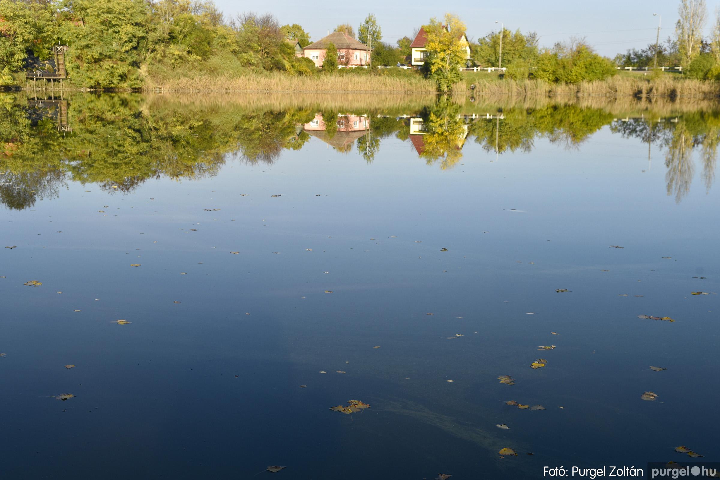 050 2020.11.08. Szegváron járt az ősz - Fotó: Purgel Zoltán© _DSC3355q.jpg
