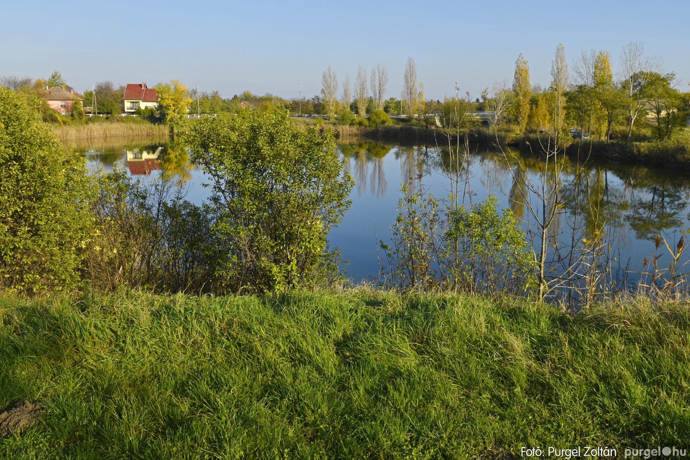 046 2020.11.08. Szegváron járt az ősz - Fotó: Purgel Zoltán© _DSC3344q.jpg
